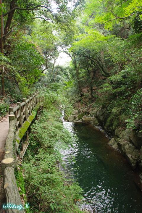 布引の滝(神戸)の画像の9枚目