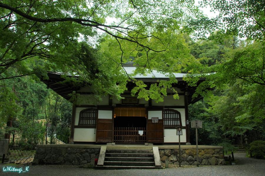 竹の寺・地蔵院の画像の19枚目